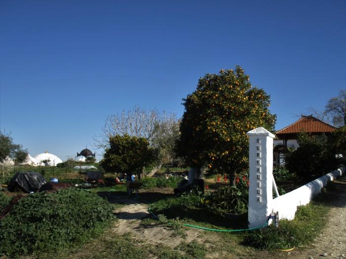 garden at suryalila