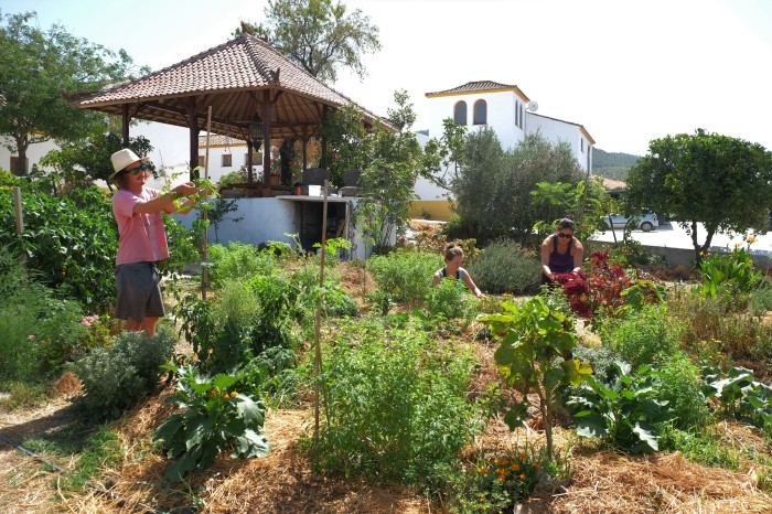 Permaculture-om-yoga